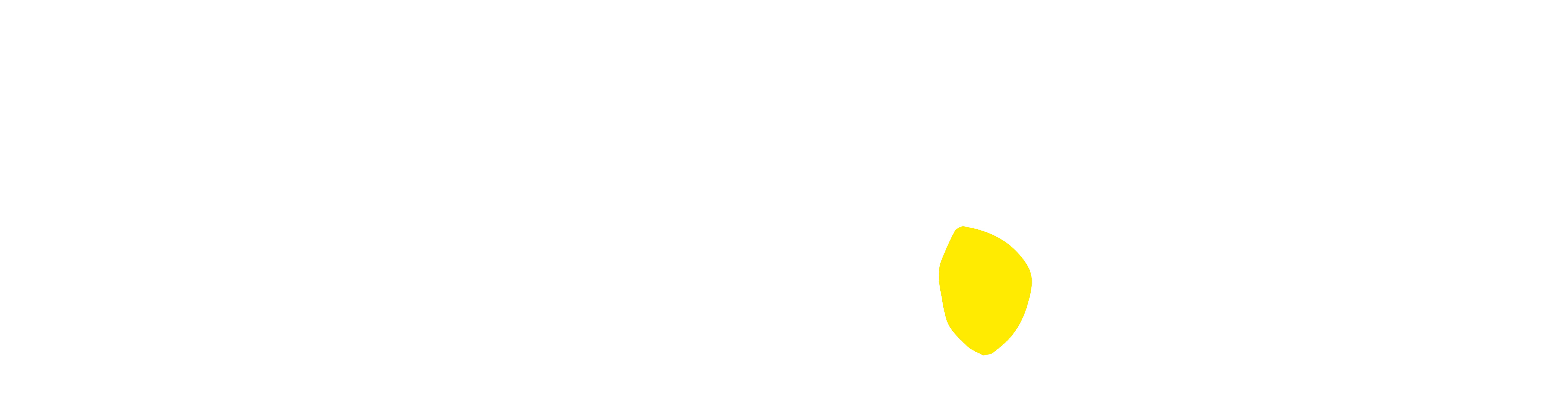 Variaton Projektorchester
